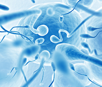 NTMIC Sperm Lab Parenting possibilities with sperm banking