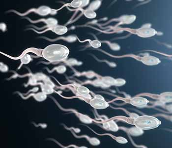NTMIC Sperm Lab, Aa leading male infertility treatment center in Dallas TX explains what sperm banking is.